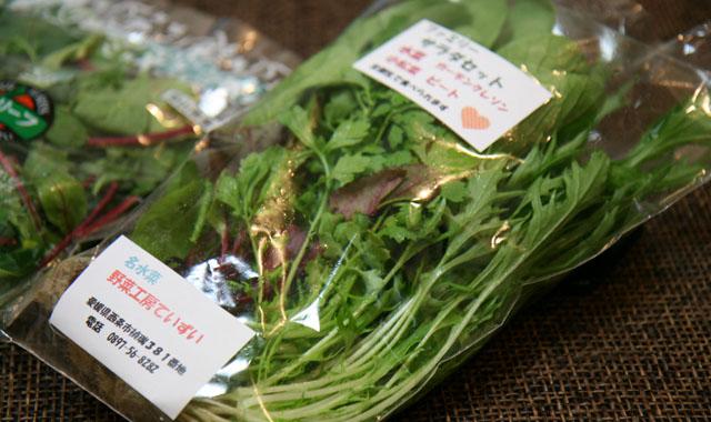サラダ野菜03