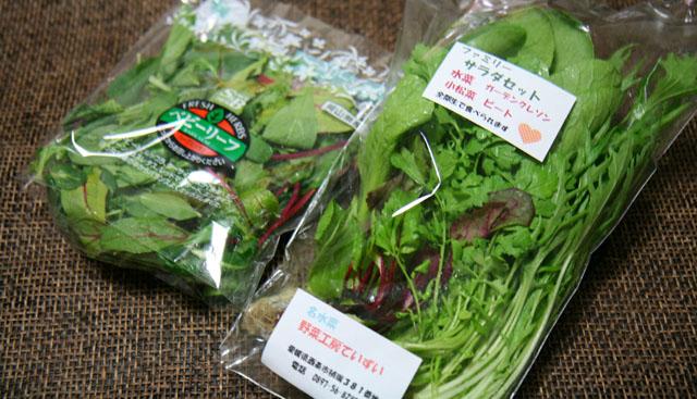サラダ野菜01
