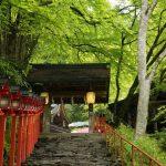 京都の新緑おすすめスポット貴船神社にいってみた!