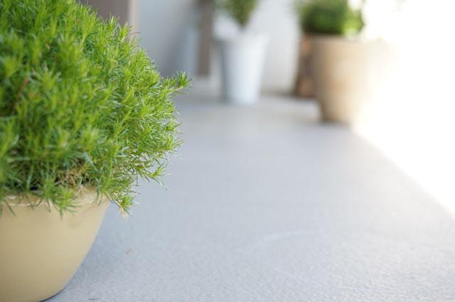 バルコニーで野菜の水耕栽培!収穫期が終わった時の簡単なお片付け編!