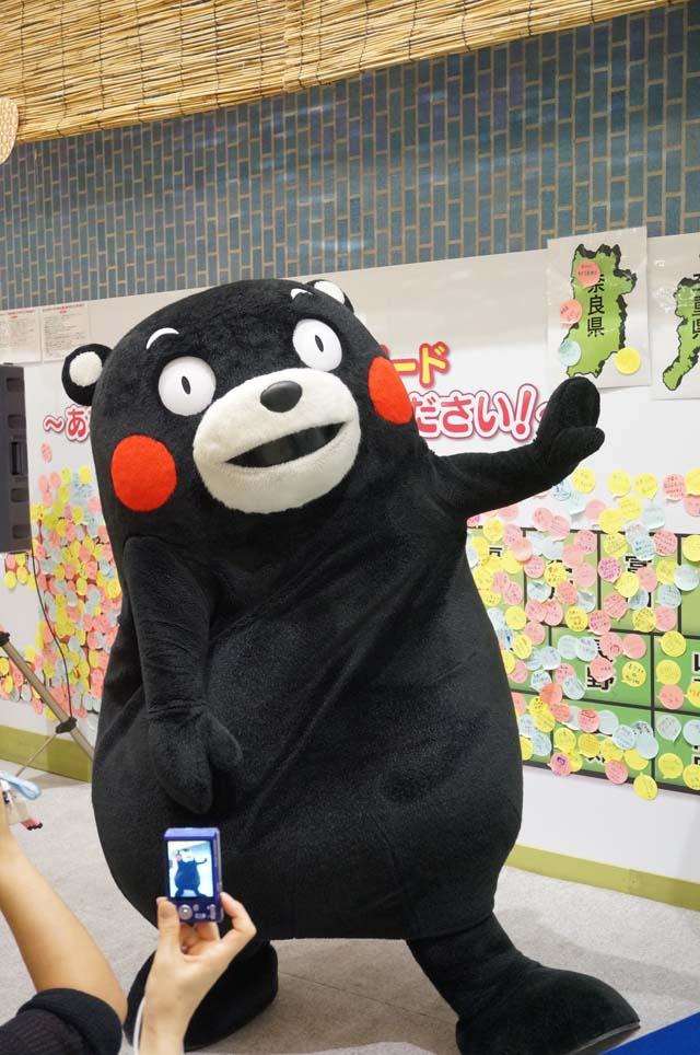 DSC09216手抜き決めポーズ