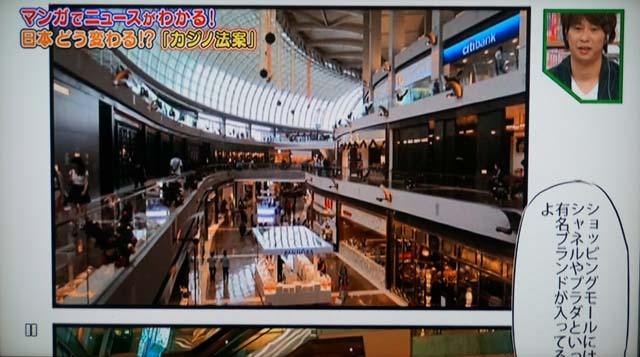 DSC05546fujiTV