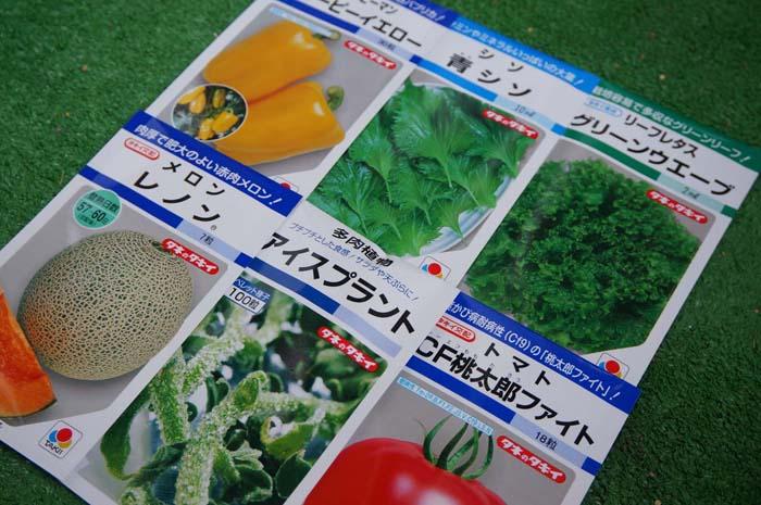 ネット通販で野菜の種探し!ベランダで野菜の水耕栽培2014春