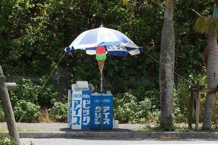 travel-okinawa-bike1day2808