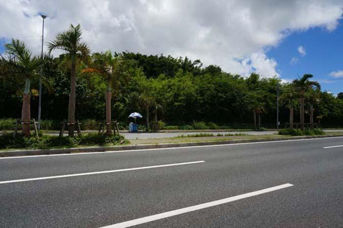 travel-okinawa-bike1day2809