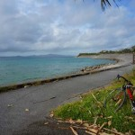 沖縄自転車一人旅!ハプニング発生!美ら海水族館から那覇編