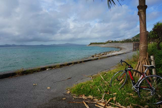 travel-okinawa-bike2day3326