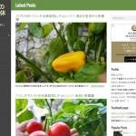 Wordpressのブログをモバイルファーストなデザインに変更してみた!