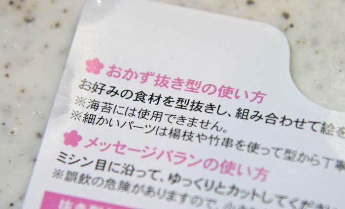 daikon-oroshi-art12