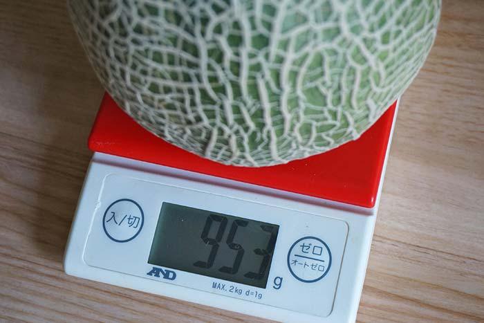 wc2016sp-melon-taste25