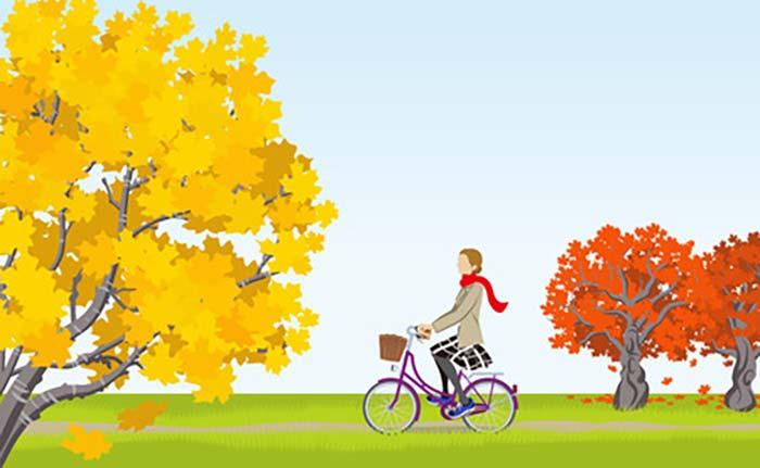 自転車通勤で季節を感じる