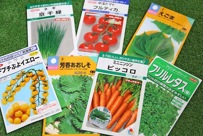 トマトとレタスと人参の種