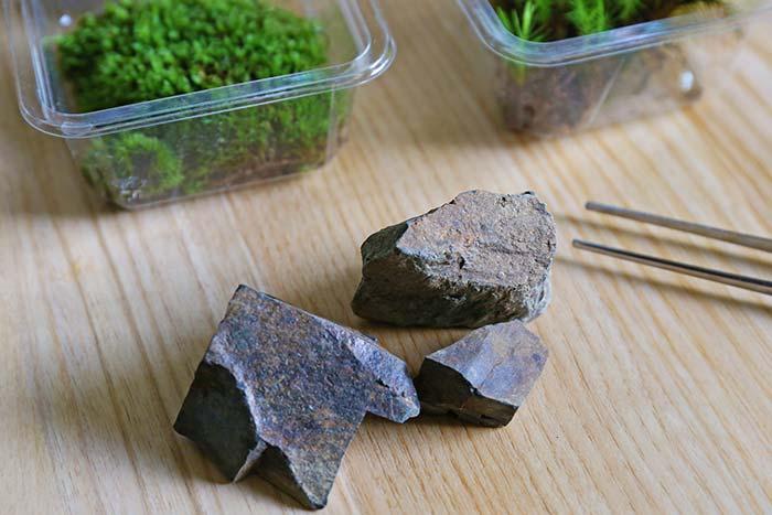 苔テラリム用の石
