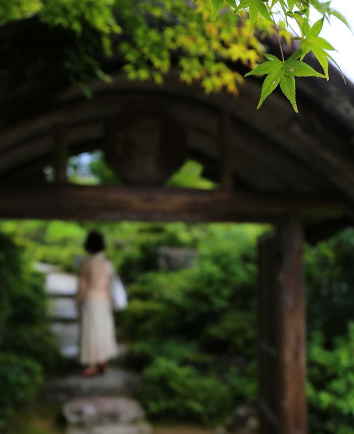 和風庭園にたたずむ女性