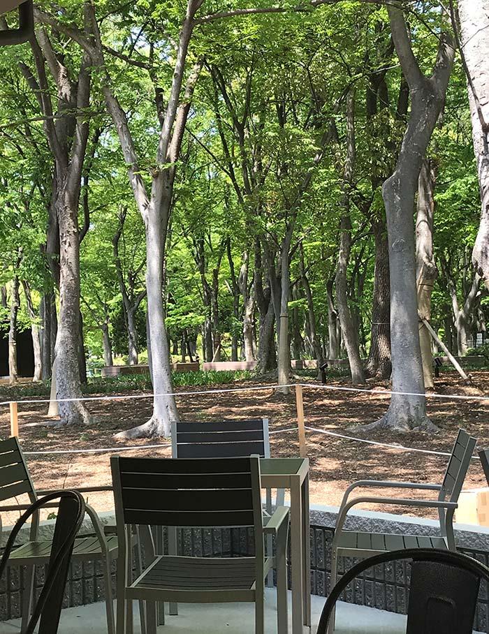森の新緑に面したテラス席