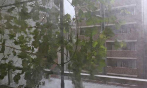 台風で吹き飛ばされそうなベランダの瀬戸ジャイアンツ