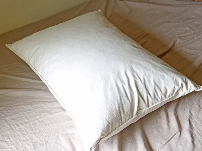 二日間乾かした枕