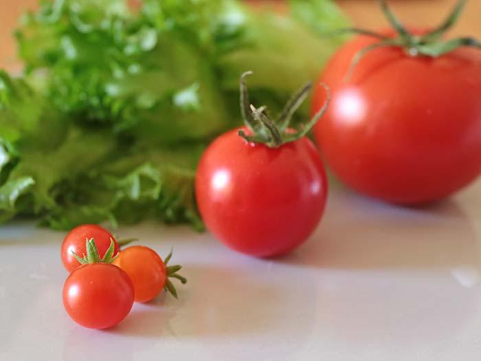 マイクロトマトと普通のトマトのサイズ比較
