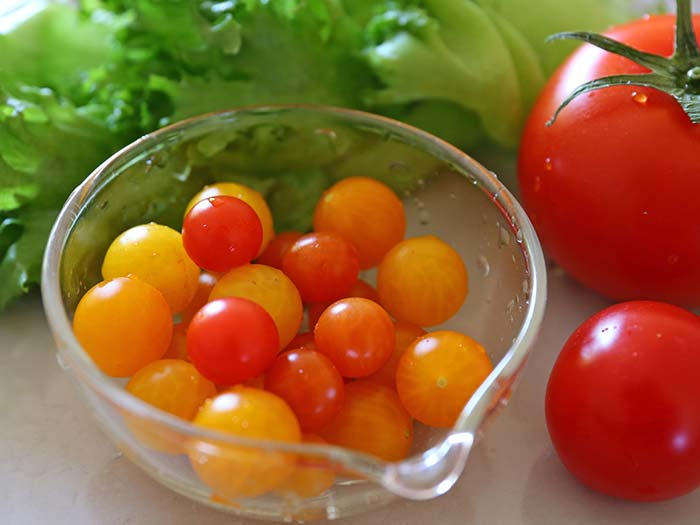収穫したマイクロトマト