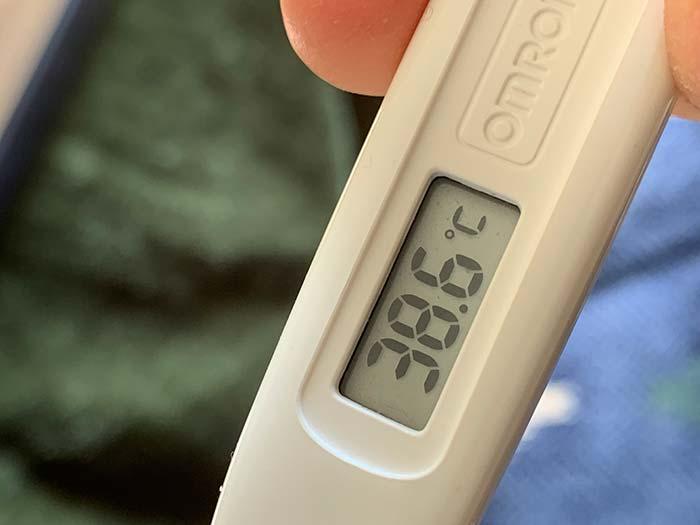 風邪にしては高めの熱