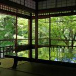 机に映る青モミジの絶景!京都の新緑撮影なら瑠璃光院が一番おすすめ!