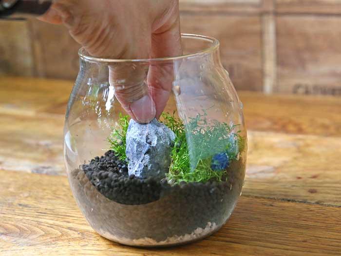 石で水草を押さえる