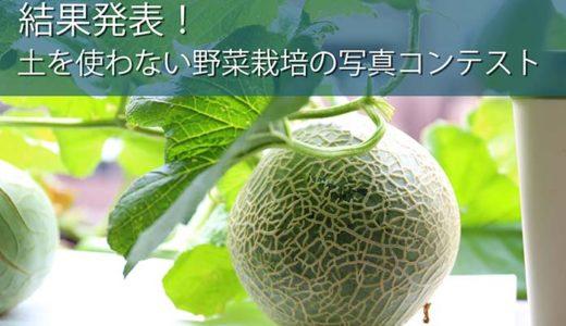 結果発表!幸せいっぱい土を使わない野菜栽培の写真コンテスト