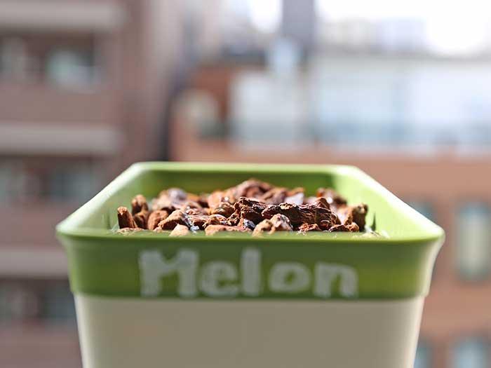 メロン栽培用のプランター
