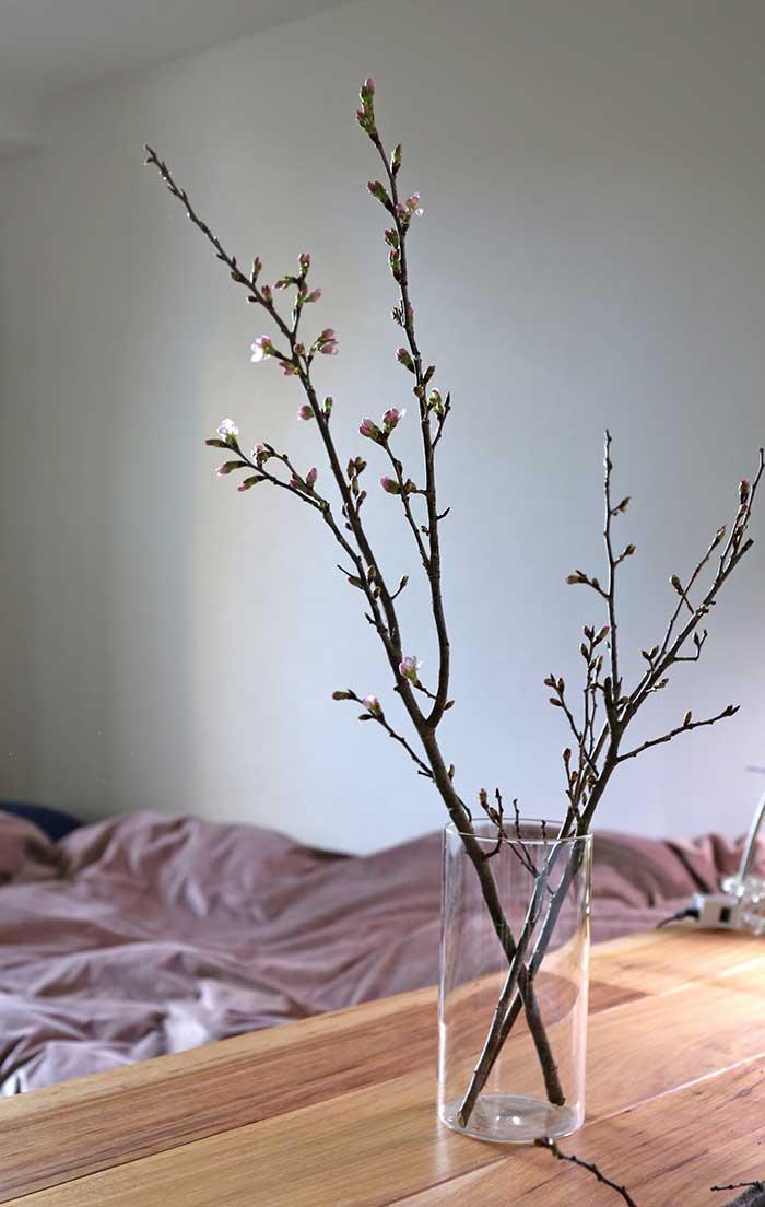 ガラスの花瓶に生けた桜の枝