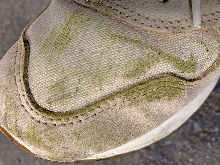 草の汁がついて緑色になったスニーカー