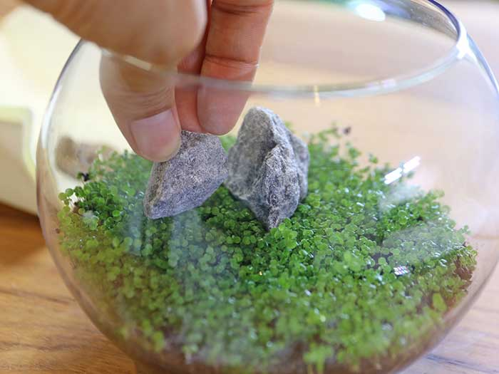 小さい石を添える様にレイアウト