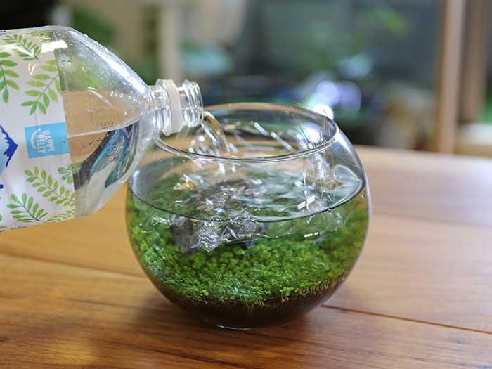 サランラップを敷いて水を優しく注ぐ