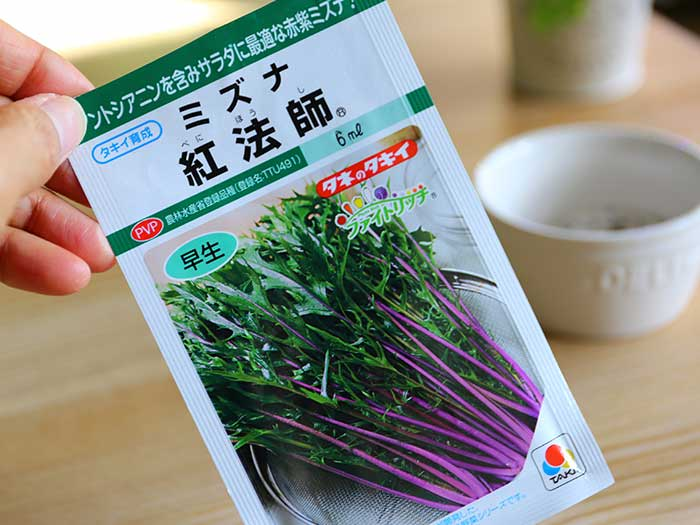 紫色のミズナの種